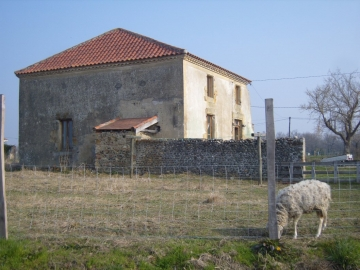 Partly renovated old house set on 2900m² of land